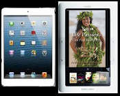 iPad, Nook and Other e-Readers (epub format)